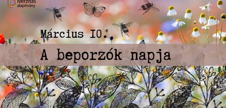 Beporzók napja, méh, virág, lepke, denevér
